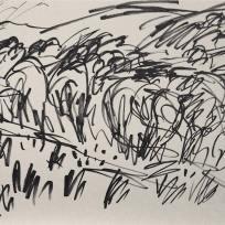 Above Todmorden Park, Marker on Paper